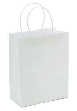 "White Paper handle Bag (4.25x8x10.25"") *NEW"