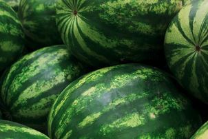 Salted Watermelon *NEW