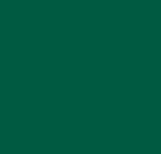 Shade of Jungle Green Liquid Candle Dye - 2oz