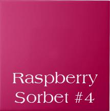 Raspberry Sorbet #4 Dye Block