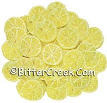 Lemon Slices Wax Embeds