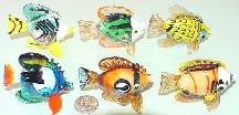 """Rialto Fish 2.75"""" Assorted Colors"""