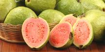 Guava - 16oz