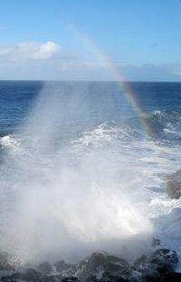Ocean AromaMagic™ Oil *Clearance
