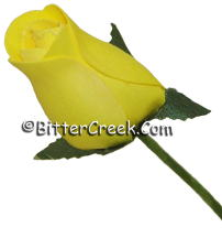 Texas Yellow Wood Roses