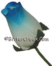 White Blue Wood Roses