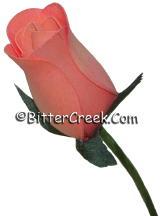 Carnation Pink Wood Roses