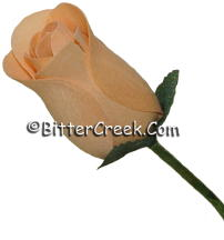 Perfect Peach Wood Roses