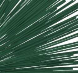 Green Incense Sticks - 19""