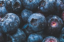 Fresh Blueberries - 16oz