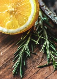 Vanilla Rosemary *NEW for 2019!